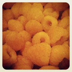 golden raspberries were used in the cupcakes
