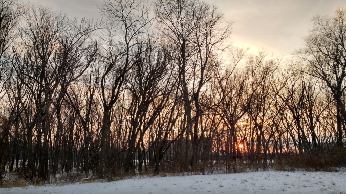 I'm an upper midwest gal and I love my snow   Rachel Running Wild blog