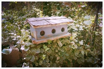 a mini-me house for the birds!