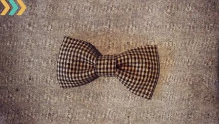 plaid bow tie_boy
