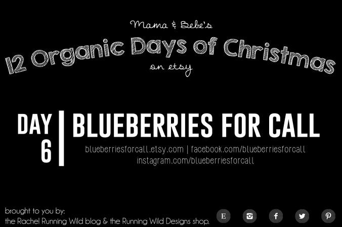 Banner_Day6_blueberriesforcall