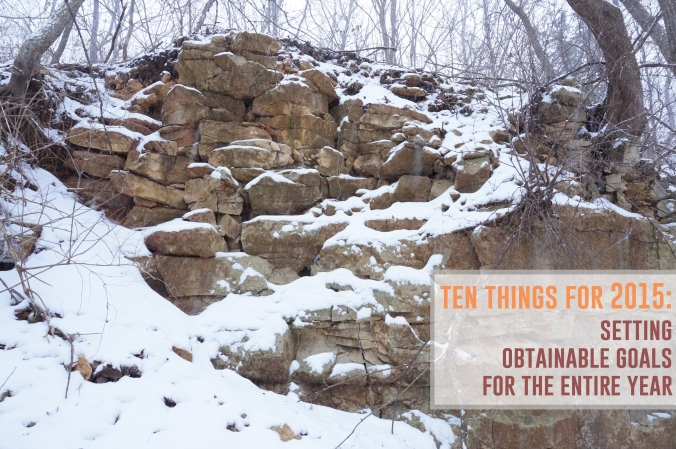 ten things for 2015 by the Rachel Running Wild blog