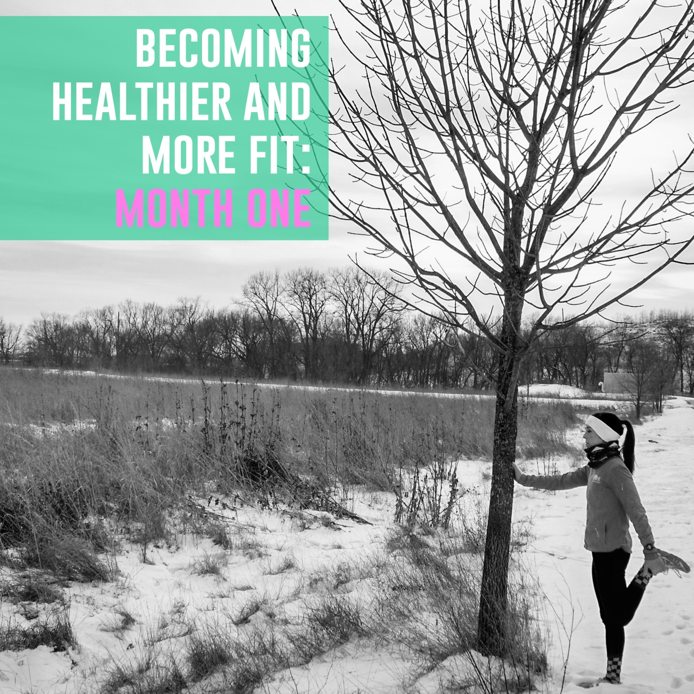 Becoming Healthier and More Fit_Month ONE